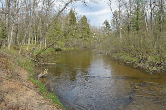 25 of Michigan's must-visit rustic campgrounds - mlive com