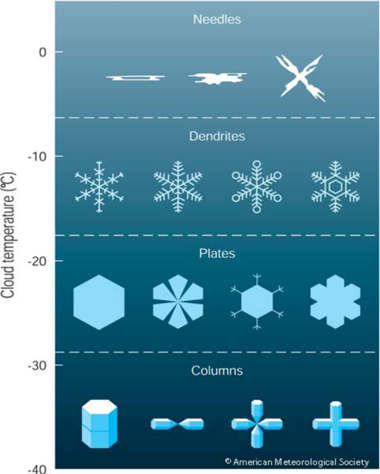 Here are some snowflake types categorized by the American Meteorological Society.