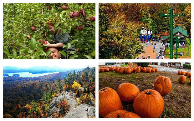 pumpkin patch near woodstock ny