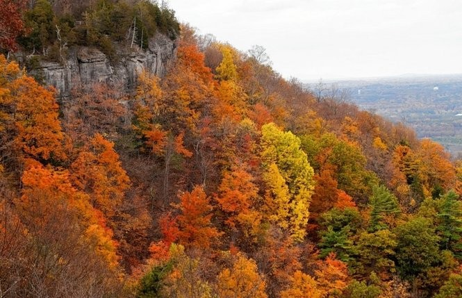 Fall colors shine at Thacher State Park in Voorheesville, N.Y.