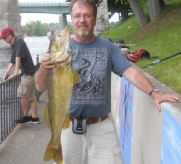 """Dave Smith, of Oswego, caught and released this impressive, 32-inch walleye fishing from shore on the Oswego River. He let it go after this photo was taken. He said it weighed 11 pounds. He caught it """"drifting"""" a night crawler."""