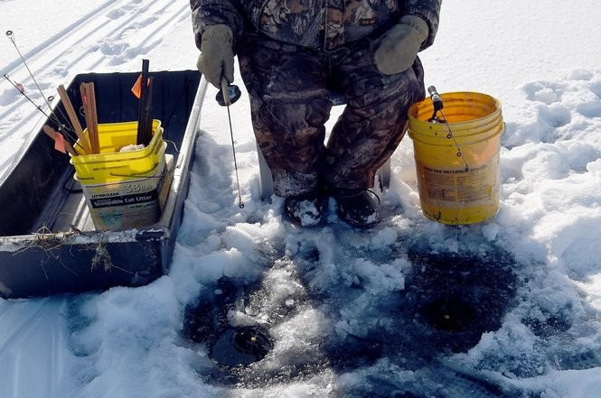 Shiners, maggots, fathead minnows: Ice fishing bait sales way up in