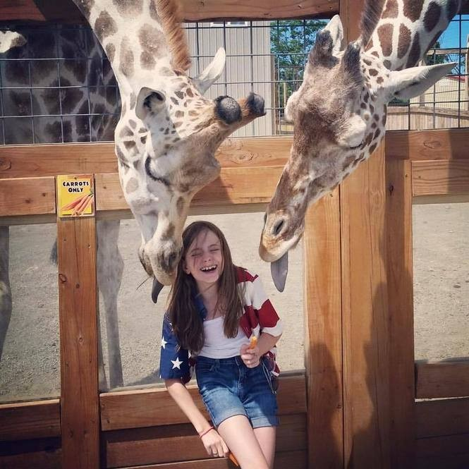 Awesome animal encounters in Upstate NY: Zoos, sanctuaries and other