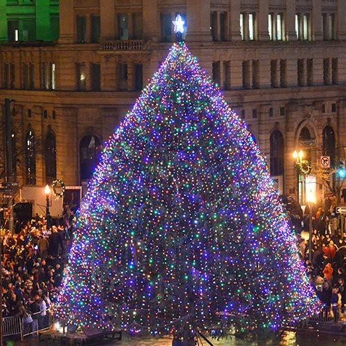 Christmas Tree In Ny: 6 Magical Polar Express, Christmas Trains In Adirondacks