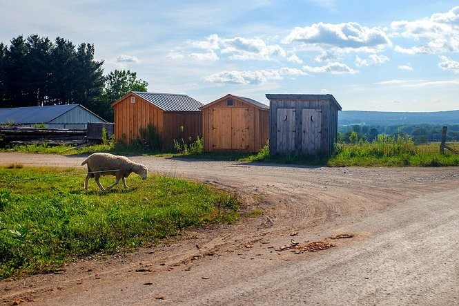 Photos: The beauty of the Amish Trail in Chautauqua County