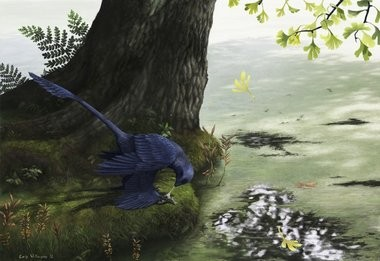 """Microraptor Piscivory, "" an illustration by Emily Willoughby of Montgomery."