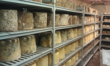 Wheels of cheese age in the cheese cave at Valley Shepherd Creamery in Long Valley, NJ.