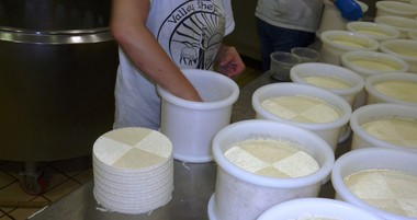 Wheels of Shepherd's Basket, a sheep's milk cheese Made in the tradition of Manchego are unmolded and then aged for a minimum of five months at Valley Shepherd Creamery in Long Valley, NJ.