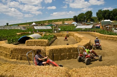 Cherry Crest delivers family farm adventures in Lancaster County