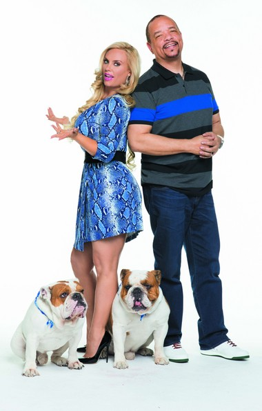 Coco and Ice-T with their bulldogs Maximus and Spartacus. (Fox)