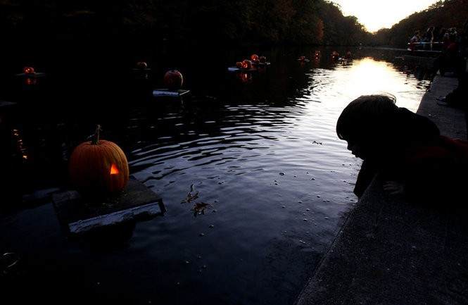 Sean Sullivan, 3, watches the pumpkins float by during the Great Pumpkin Sail in Echo Lake Park. Visitors launch their jack-o-lanterns onto the water the day after Halloween. (John Munson/The Star-Ledger)