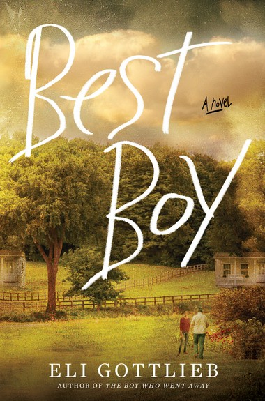 A novel told from the vantage point of an autistic man who has lived in an assisted care facility for over 40 years.
