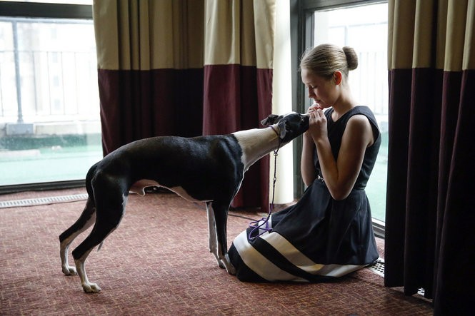 Sophia Rogers with her whippet, Erik, at a Westminster preview event in 2015. (Alex Remnick | NJ Advance Media for NJ.com)