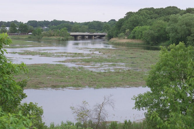 Facing east, a view of the Matawan Creek just yards upstream from where, in Matawan in 1916, a shark attacked and killed Lester Stillwell, 11 and Stanley Fisher, 24. A third attack took place farther east. The victim survived. The Garden State Parkway is at rear. (Star-Ledger file photo)