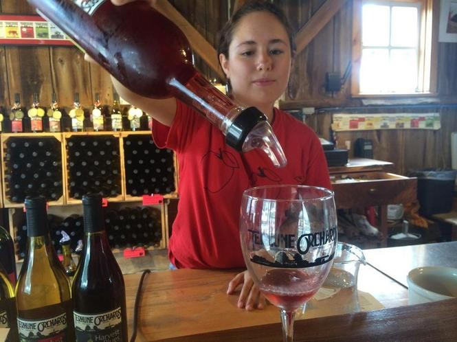 Vanessa Calu pours drinks in the wine tasting room at Terhune Orchards. (Sydney Shaw | NJ Advance Media for NJ.com)