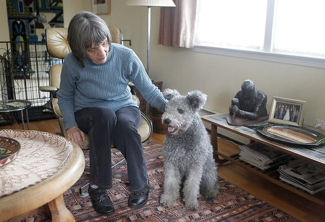 High-energy and affectionate, the pumi needs time to get accustomed to strangers. (Aristide Economopoulos | NJ Advance Media for NJ.com)