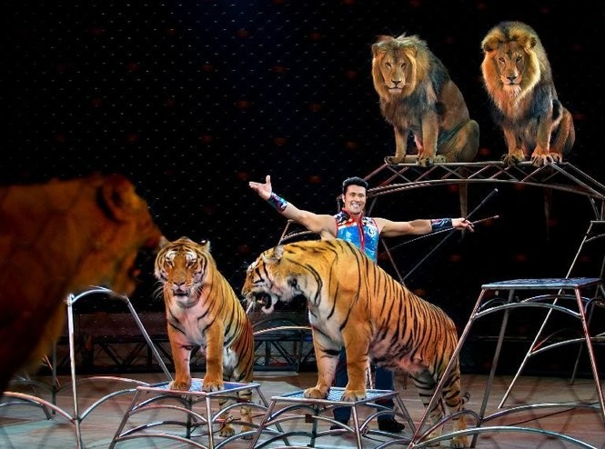 Ringling Bros. and Barnum & Bailey presents its Out of this World show in Philadelphia from Feb. 16 to 20, in Newark from March 8 to 12, and in Trenton from March 17 to 19. (Photo provided)