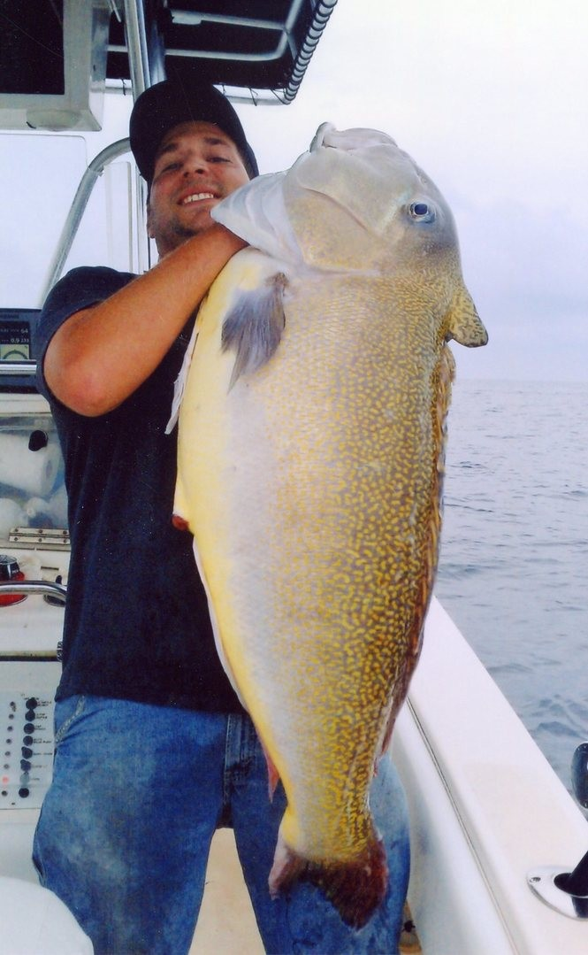 All 100 record-setting fish caught in N J  waters (with a