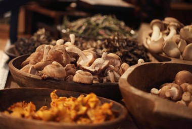 At the Stockton Market, Mushrooms etc. offers an array of locally foraged mushrooms.