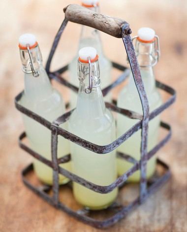 Home brewed ginger ale is great to bring to a gathering. Make it as spicy or sweet as you wish.