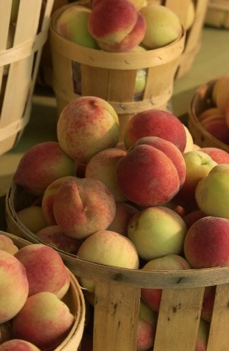A bushel of fresh ripe peaches is too tempting to not bring one home this weekend.