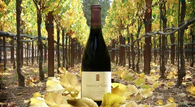 Small Vines Pinot Noir