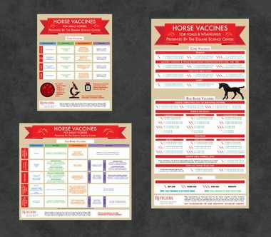 "Adult Horse infographics (pictured left) for Core Vaccinations (17"" x 22"") and Risk Based Vaccinations (25.5"" x 22"") are included in the resource package. Foal and Weanling Core & Risk Based Vaccinations (17"" x 33""), pictured on the right, are available separately."