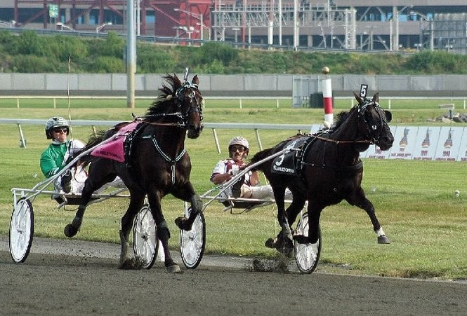 Trixton driven by Hall of Fame trainer Jimmy Takter, on the outside, duels in the stretch of the $1 million Hambletonian for 3-year-old trotters with his stablemate, Nuncio at Meadowlands Racing & Entertainment. Nuncio is driven by John Campbell. Trixton will stand at Deo Volente Farms in New Jersey for the 2016 breeding season. (Photo by Lillian Shupe | NJ Advance Media)