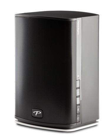 Paradigm PW 600 speaker