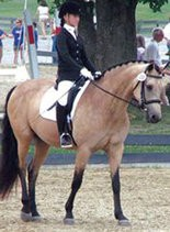 Carly Goldstein will represent the equestrian team.