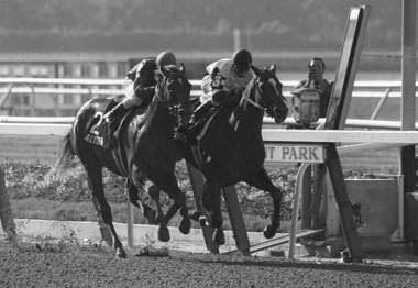 Affirmed on the inside, Steve Cauthen up, wins the Belmont Stakes and the Triple Crown, ahead of Alydar, Jorge Velasquez up, in Elmont, N.Y., in this June 10, 1978 photo. (AP Photo | File)
