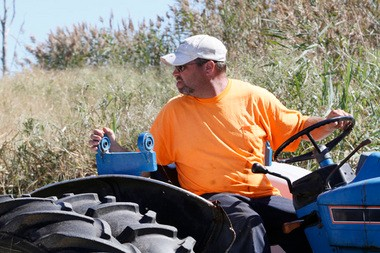 Mike Coombs of Cedarville, one of the last salt hay farmers in New Jersey, baling hay on a Delaware Bay meadow. Salt water intrusion from failed dikes and strict environmental regulations may put Coombs out of business.