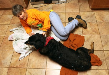 Carolyn Oefelein of Washington with her 11-year-old dog Kayla. She believes acupuncture saved her dog's life.