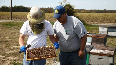 Commercial Beekeeper Grant Stiles gives his bees their first check up for the the pollination season with New Jersey State Apiarist Tim Schuler. Schuler works with Grant throughout the season to help him combat the effects pests and parasites, pesticides, bacterial and viral diseases and poor nutrition can have on Grant's hives. 5/07/14. (Photo by Adya Beasley | NJ Advance Media for NJ.com)
