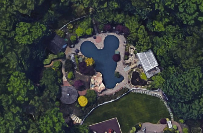 Nicoll's $800,000 Mickey Mouse pool, as seen from above on Google Maps.