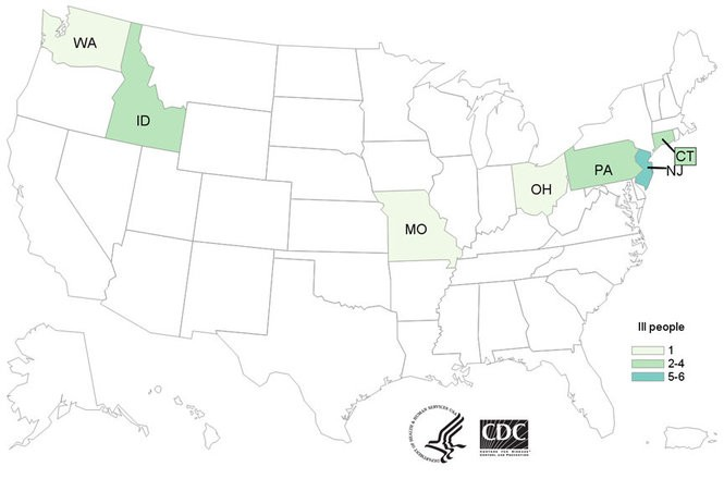 The Centers for Disease Control and Prevention's case count map of the U.S. states experiencing outbreaks of E. coli.