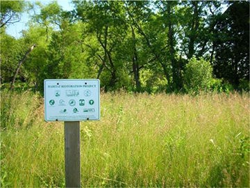 Mannington restored 12 acres of its property from mowed lawn to the region's native grassland.