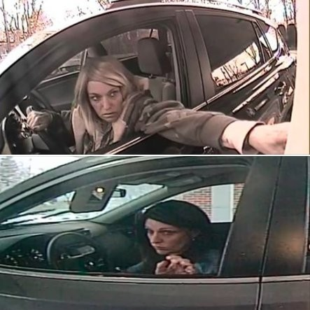 A woman wearing a wig is suspected of being part of a criminal ring that breaks into cars to steal purses containing checks and credit cards, according to Toms River police. () She was arrested Thursday in Asbury Park.