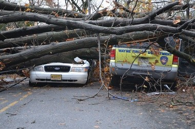 Wayne cop crushed by tree during Sandy promoted to sergeant, report