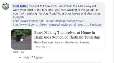 One of Chatham Mayor Curt Ritter's Facebook posts