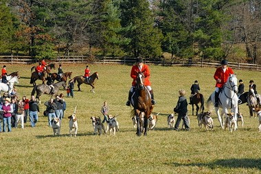 The Essex Fox Hounds, who draw a crowd for the Thanksgiving meet would like to see as enthusiastic a turnout for their new race day at Natirar next month