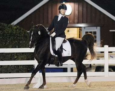 Lauren Chumley of Flemington shows her determination during a competition at Dressage at Devon on Artisan's Jazzman, a Morgan pony.
