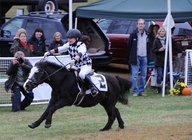 Cadence Clucas didn't let a fall get her down and finished her race on My Friend Fluffy.