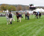 Moorland Farms, the domain of race horses every October, will be hosting eventing in the summer of 2017.