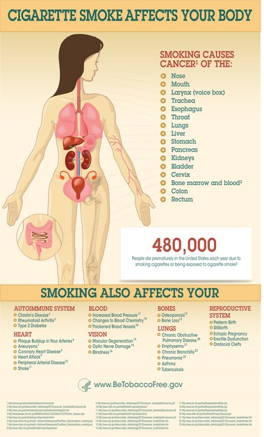 The impact of smoking on the human body