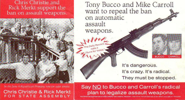 """A campaign mailer from Chris Christie's failed 1995 Assembly bid picked up on an earlier motivation for the young politician: Keeping in place a state ban on assault weapons. Christie, now running for president, on Tuesday evening denied ever telling the Star-Ledger that keeping assault weapons banned in New Jersey """"motivated"""" him to enter politics in 1993, when he first ran for state Senate. (Credit: The Election Fund of Chris Christie)"""