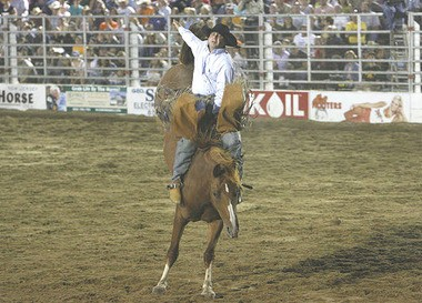 A cowboy is seen in this file photo during the bareback bronc riding competition at Cowtown Rodeo. The New Jersey SPCA Wednesday said it is investigating the sudden death of another horse during Saturday night's performance at the rodeo in Pilesgrove Township.