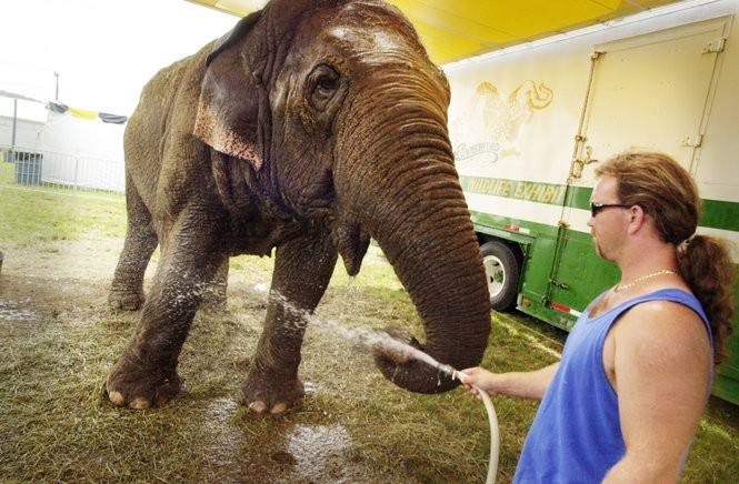 An elephant named Beulah being sprayed with water at the Sussex County fair in 2003.
