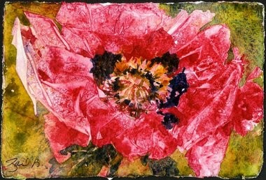 """Gail Bracegirdle's watercolor of a poppy, the source of opium, is part of the exhibit """"Dangerous Blossoms"""" at the D&R Greenway Land Trust's Johnson Education Center in Princeton."""