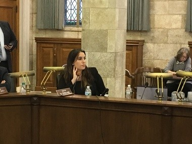 State Senator M. Theresa Ruiz, D-Essex, listens to testimony from Port Authority officials.
